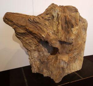 Grafsteen versteend hout 31099