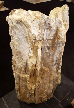 Lápida madera petrificada 0000