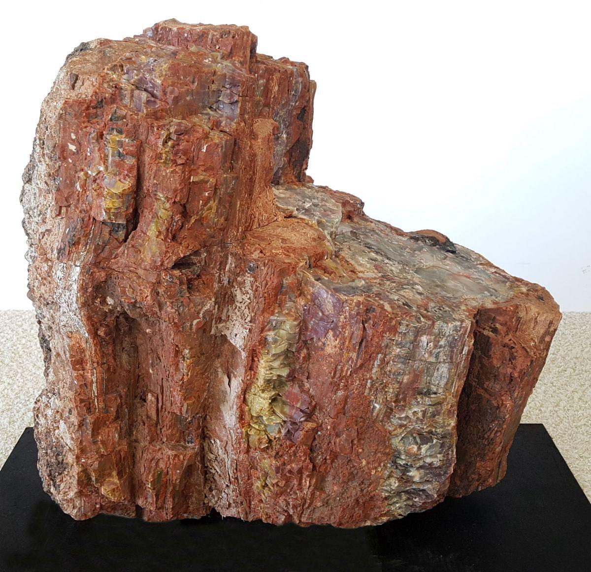 Lápida madera petrificada 22555