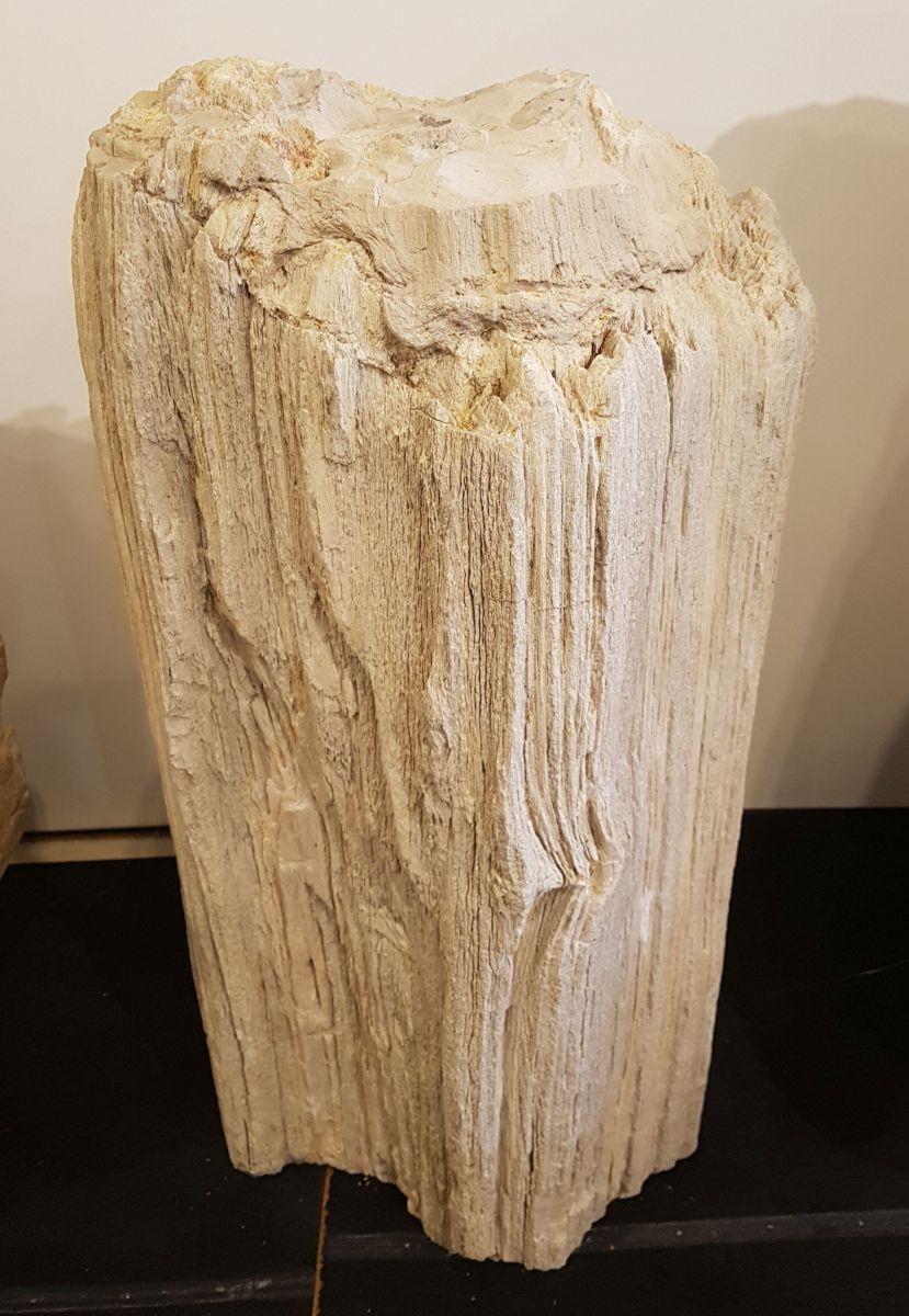 Lápida madera petrificada 27788