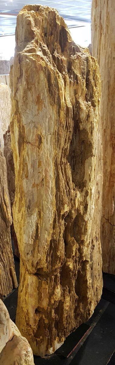 Lápida madera petrificada 29079