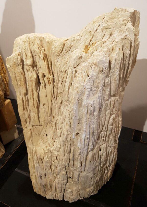 Lápida madera petrificada 29102