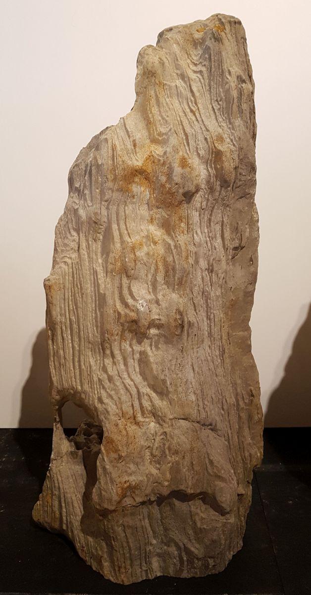 Lápida madera petrificada 30087