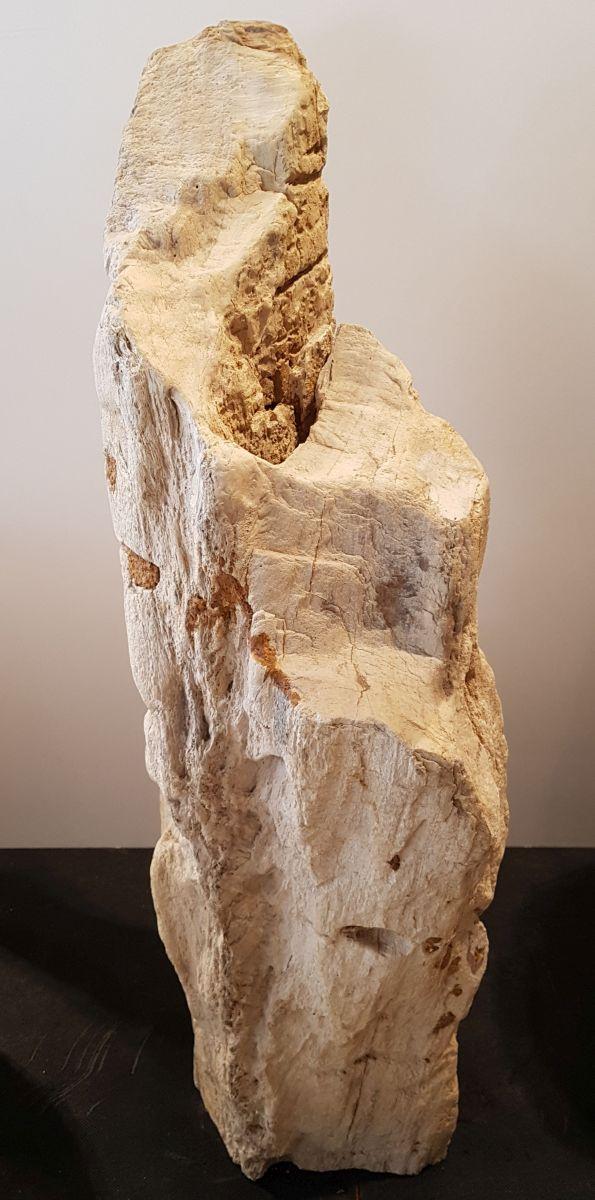 Lápida madera petrificada 30088