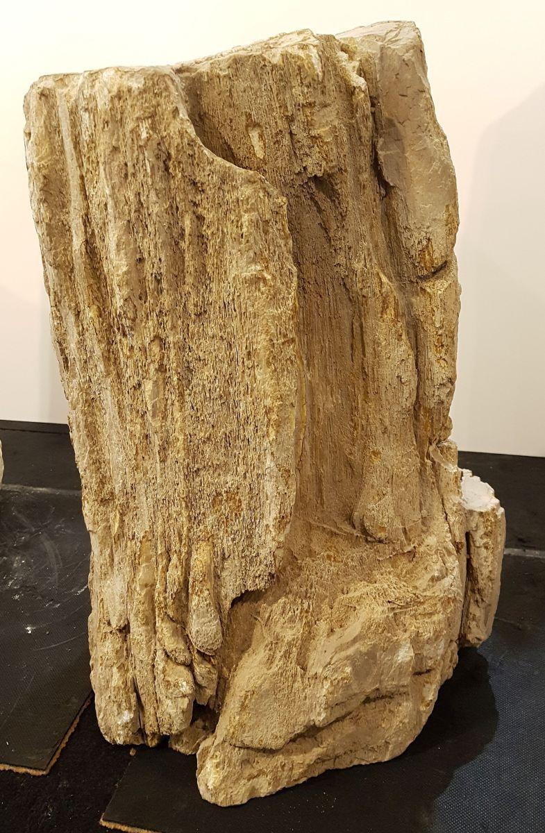 Lápida madera petrificada 30092