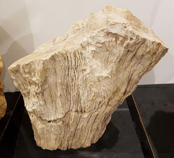 Lápida madera petrificada 30096