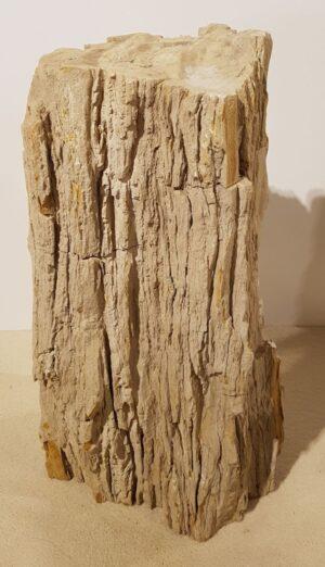 Lápida madera petrificada 30110