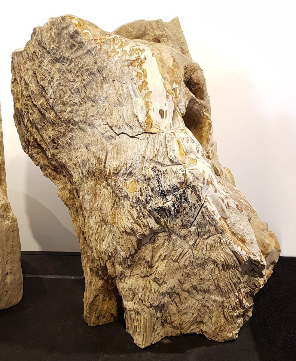 Lápida madera petrificada 30117