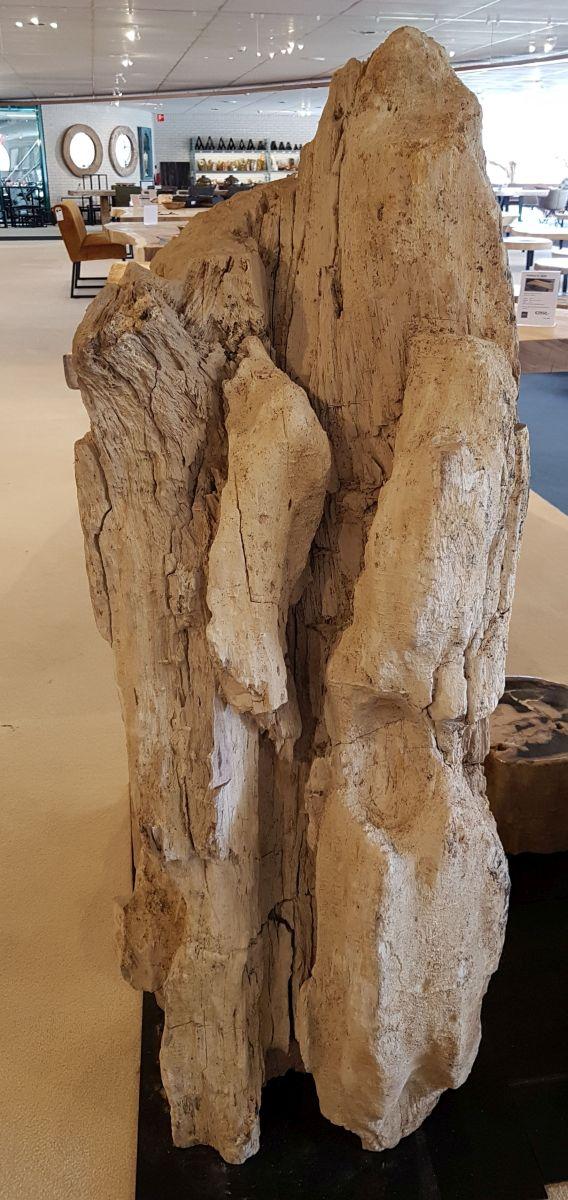 Lápida madera petrificada 31104