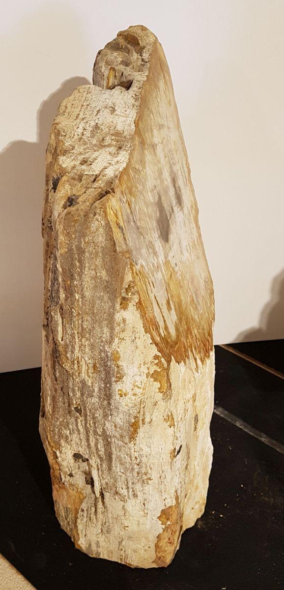 Lápida madera petrificada 31118