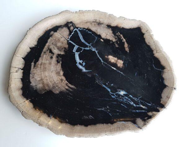 Plato madera petrificada 26045