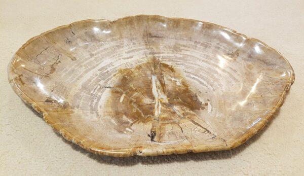 Plato madera petrificada 28242