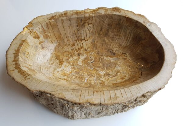 Bol madera petrificada 28745