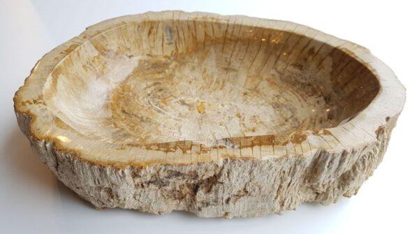 Bol madera petrificada 28746
