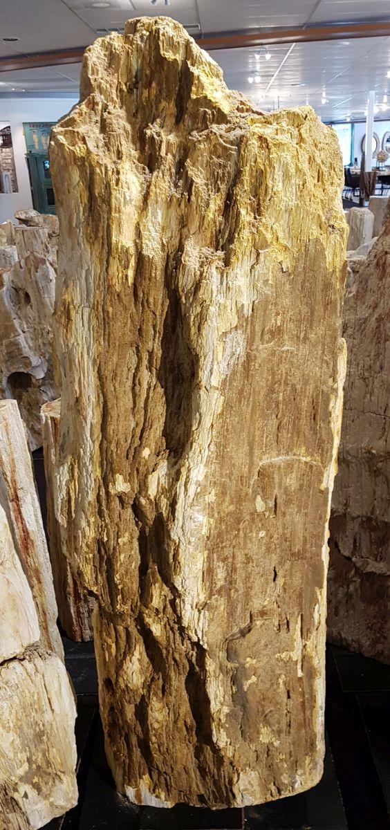 Memorial stone petrified wood 29079