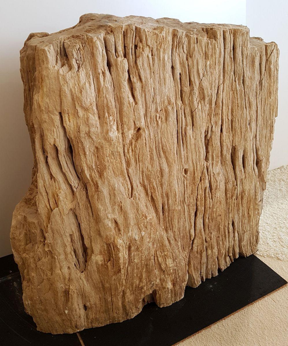 Memorial stone petrified wood 30080