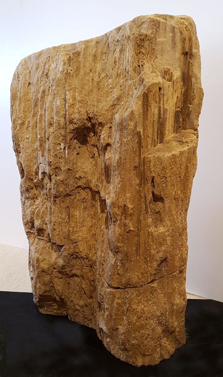 Memorial stone petrified wood 32145