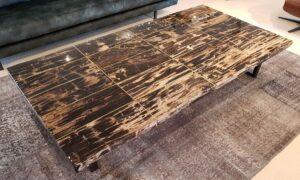 Mesa de centro madera petrificada 22334