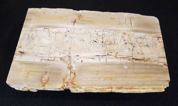 Mesa de centro madera petrificada 26185
