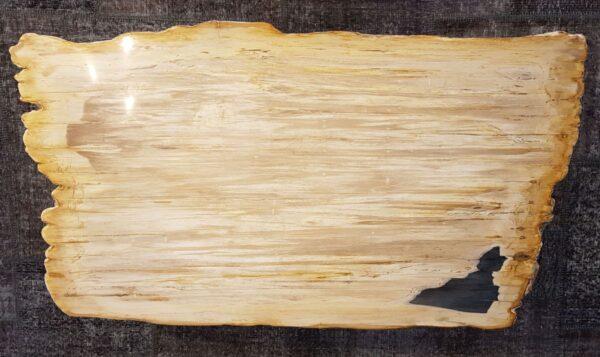 Mesa de centro madera petrificada 28397