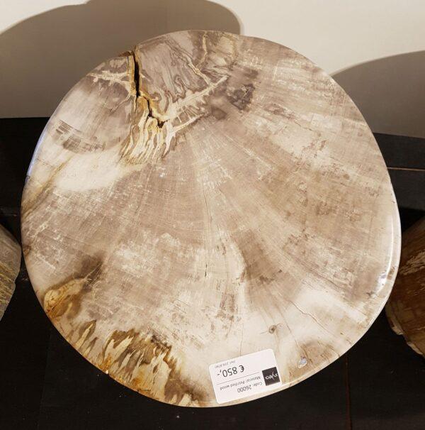 Mesilla madera petrificada 26000