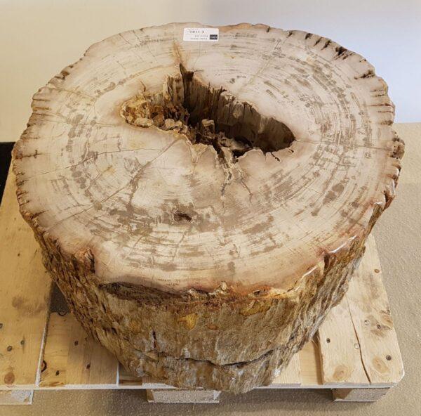 Mesilla madera petrificada 26016