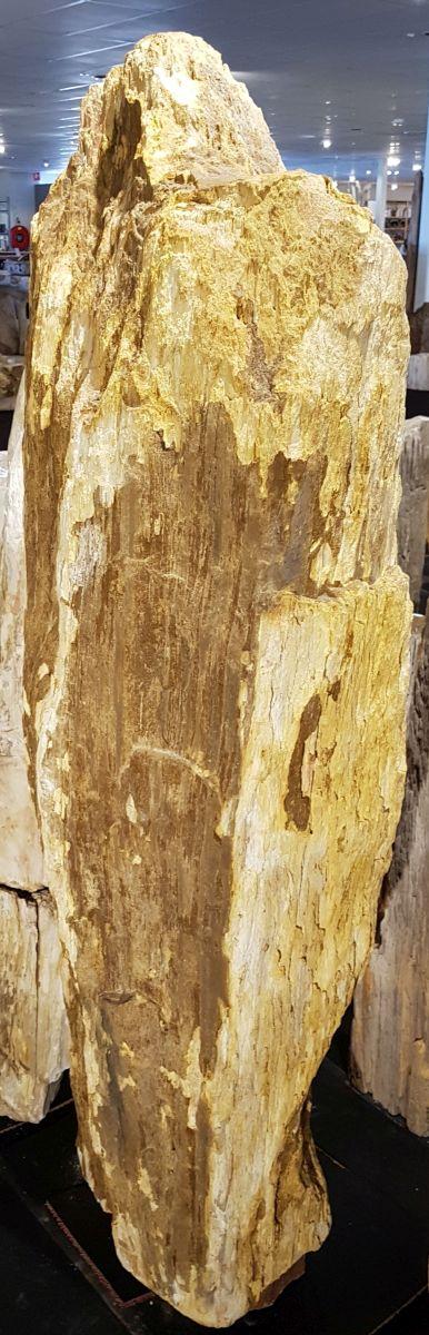 Pierre tombale bois pétrifié 29079