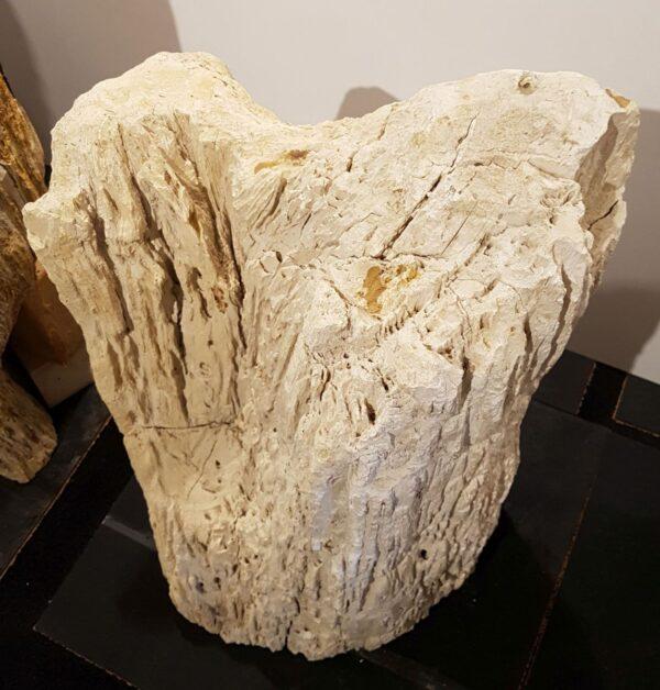 Pierre tombale bois pétrifié 29102