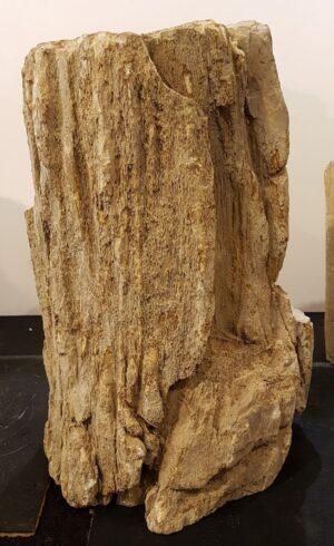 Pierre tombale bois pétrifié 30092