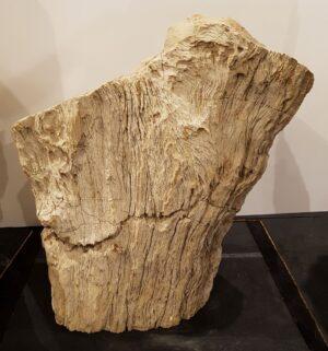 Pierre tombale bois pétrifié 30096