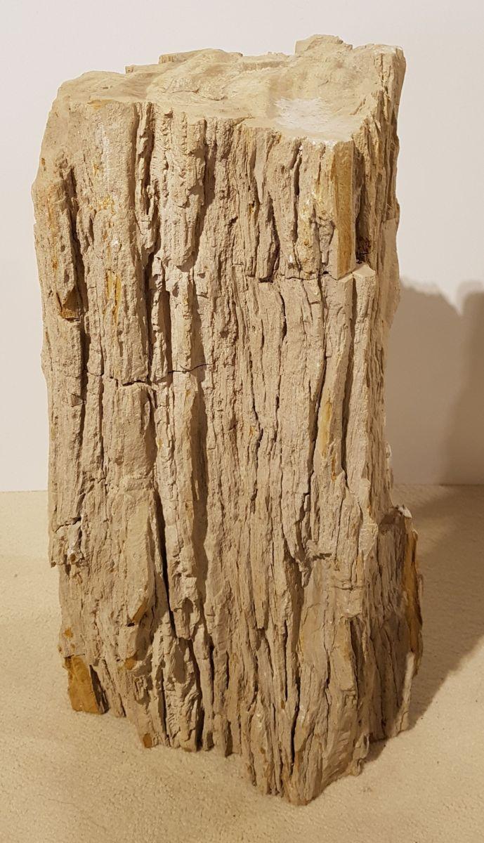 Pierre tombale bois pétrifié 30110