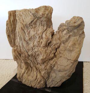 Pierre tombale bois pétrifié 31065