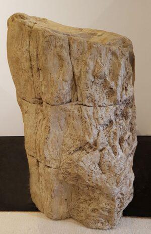 Pierre tombale bois pétrifié 32145