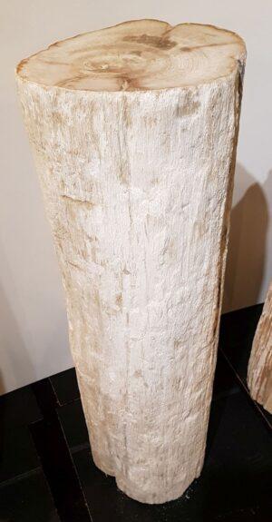 Pierre tombale bois pétrifié 32458