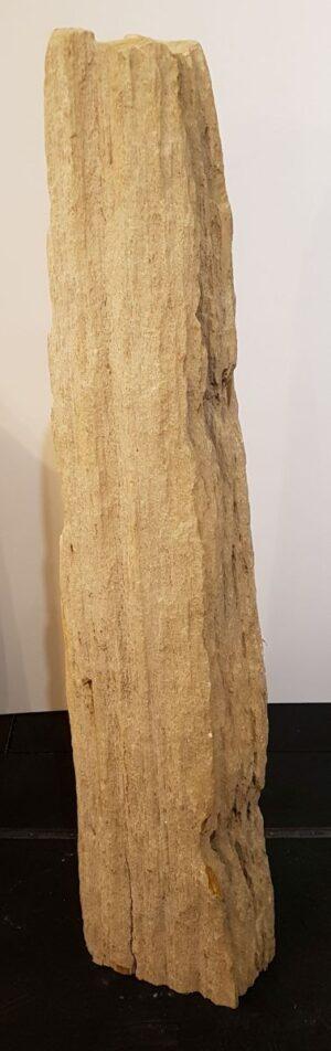 Pierre tombale bois pétrifié 32591