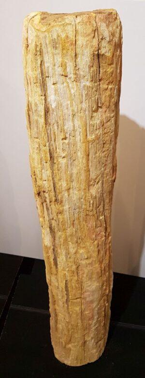 Pierre tombale bois pétrifié 32595