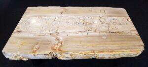 Salontafel versteend hout 26185