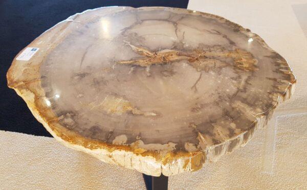 Salontafel versteend hout 29194