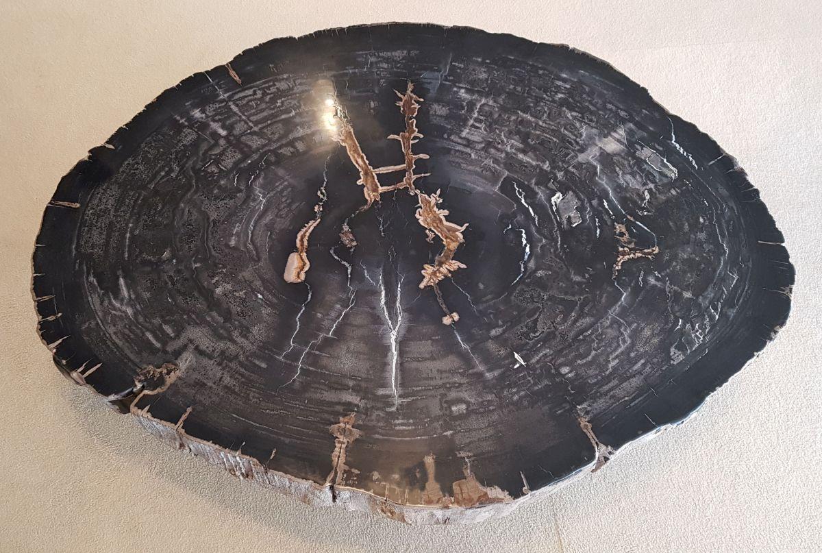 Salontafel versteend hout 30249