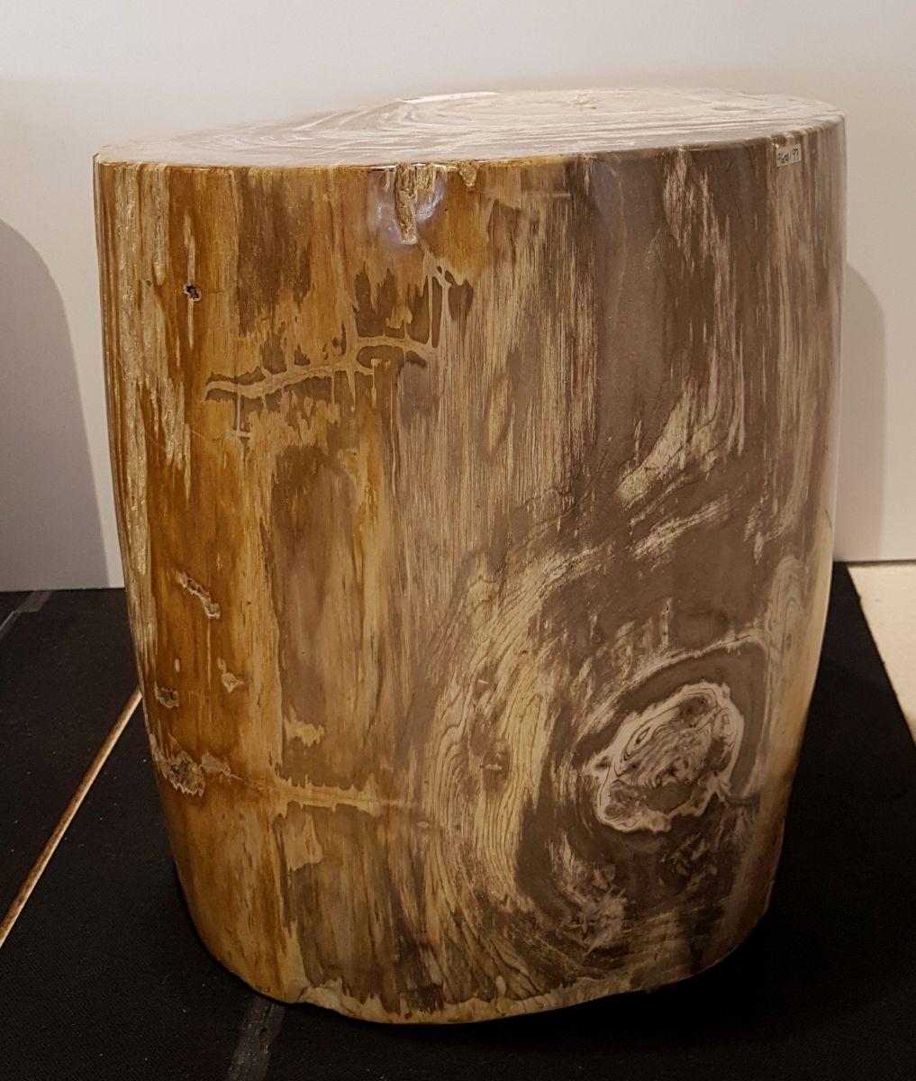 Side table petrified wood 26002