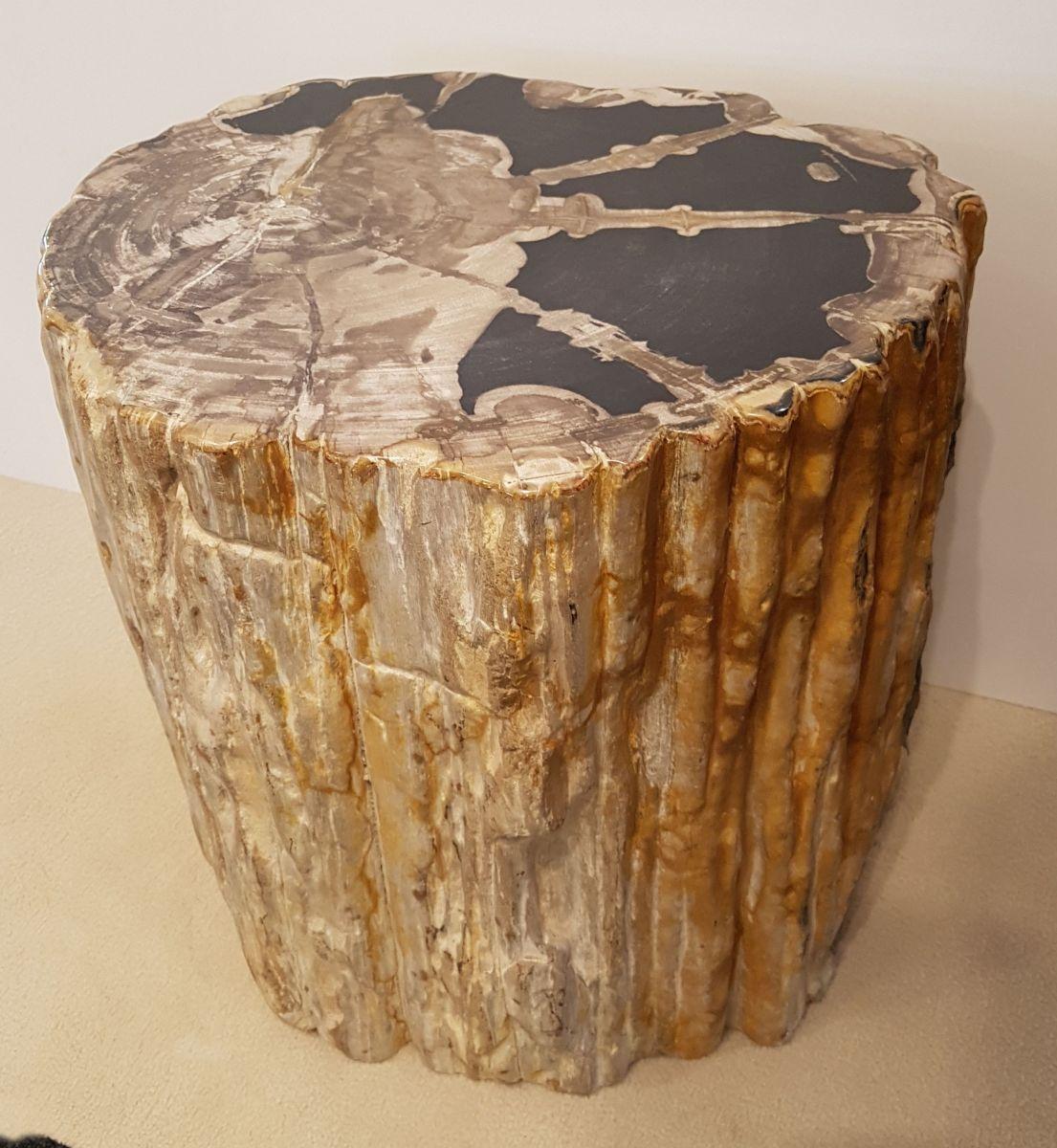 Side table petrified wood 32006