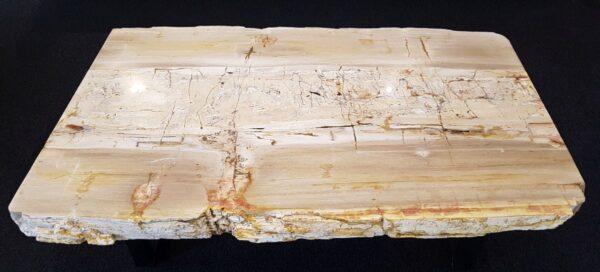 Table basse bois pétrifié 26185