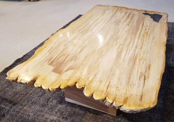 Table basse bois pétrifié 28397