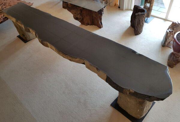 Table basse bois pétrifié 91216