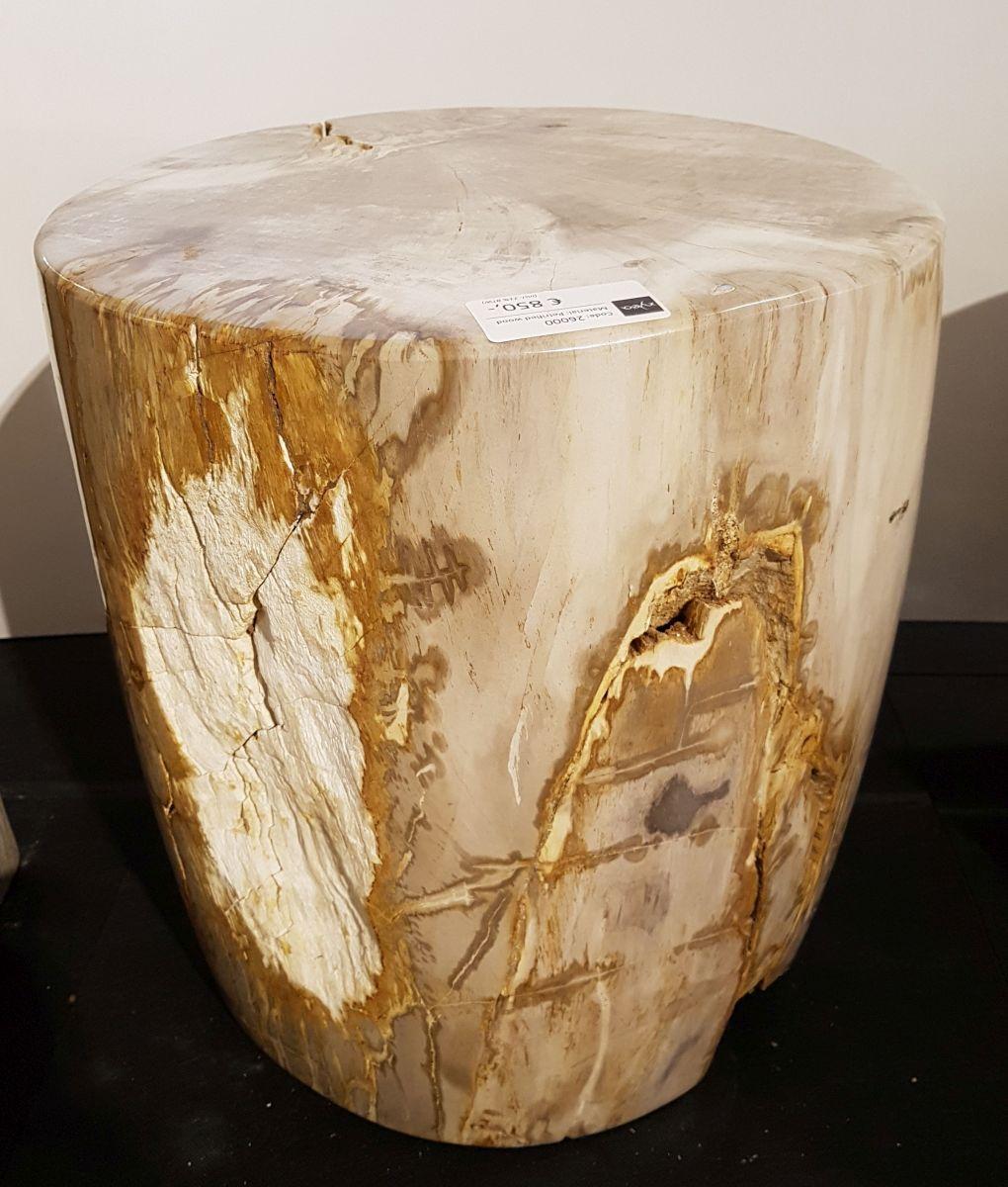 Table d'appoint bois pétrifié 26000