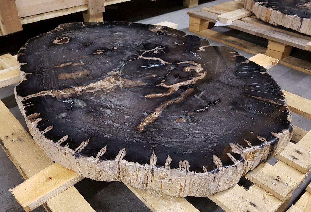 Salontafel versteend hout 30235