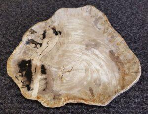 Teller versteinertes Holz 22094