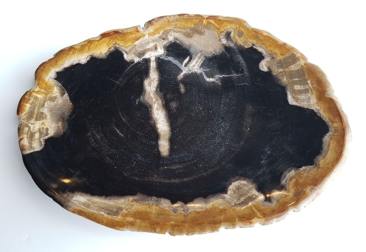 Teller versteinertes Holz 26110