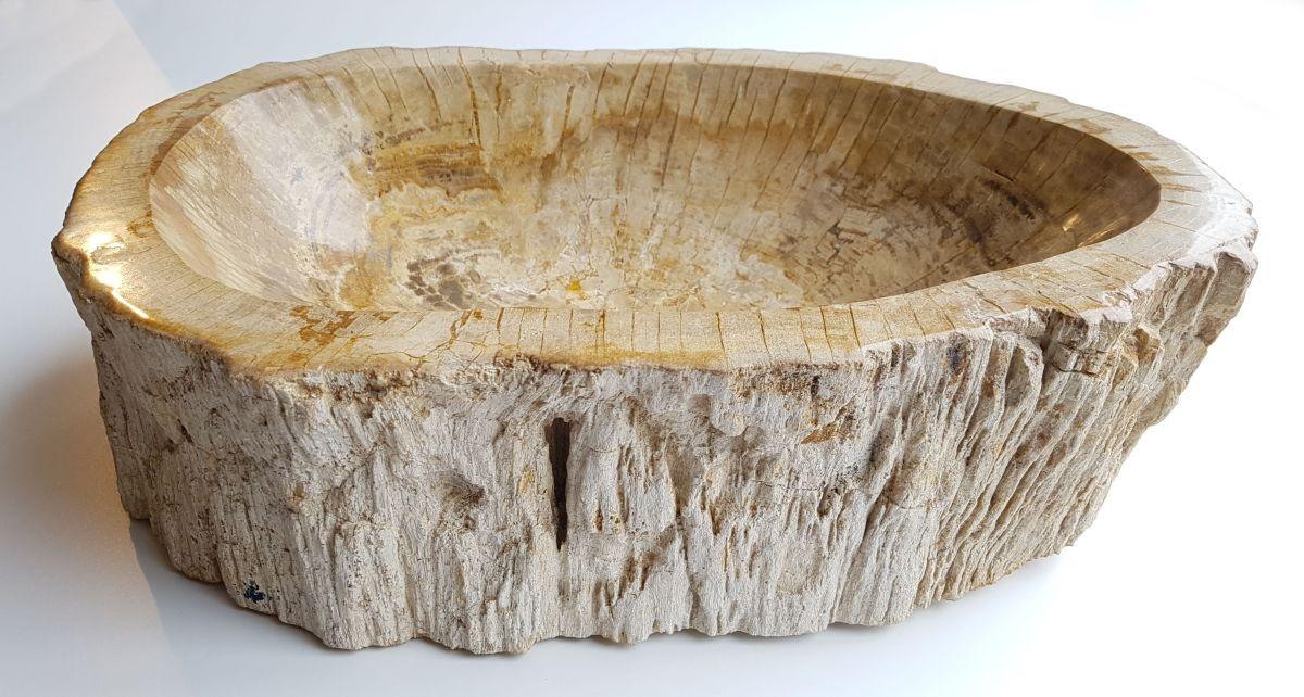 Schale versteinertes Holz 27567