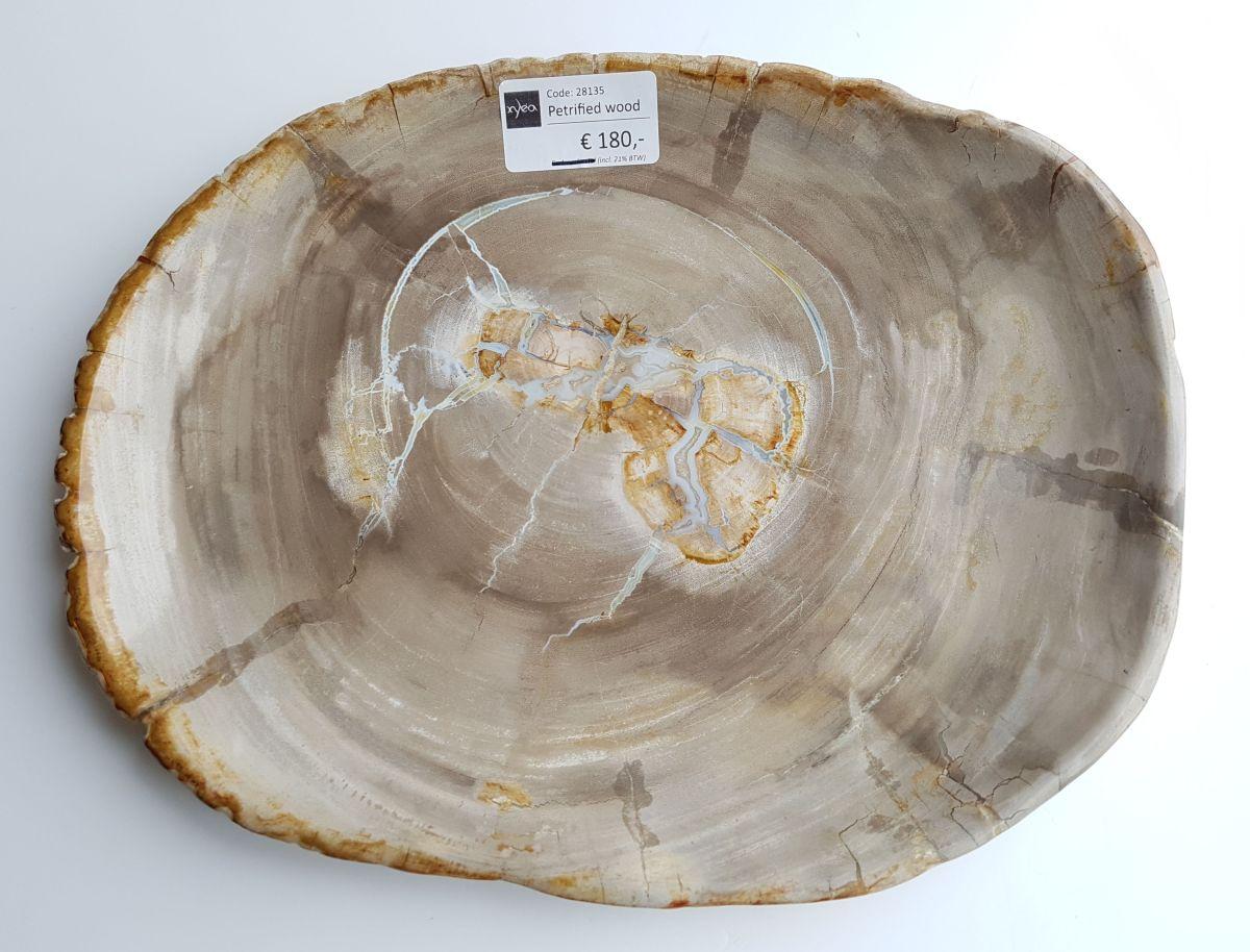 Teller versteinertes Holz 28135